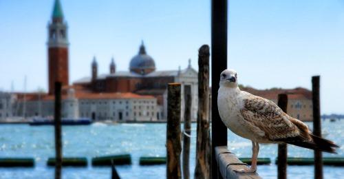https://www.literaturportal-bayern.de/images/lpbawards/Venedig_k.jpg