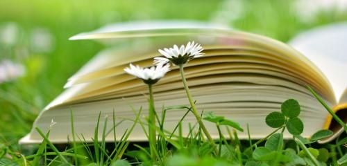 https://www.literaturportal-bayern.de/images/lpbblogs/instblog/2018/klein/book-2304389_500.jpg