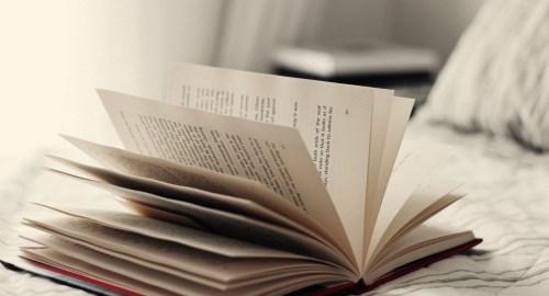 https://www.literaturportal-bayern.de/images/lpbblogs/redaktion/2019/klein/Buchgr2.jpg